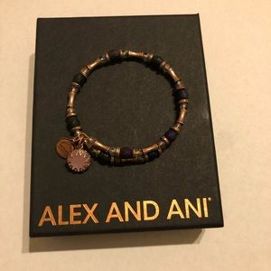 Alex and Ani Riches Wrap Bracelet